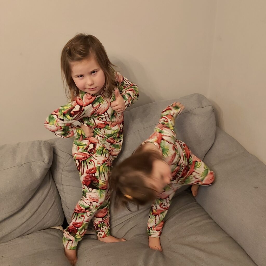 Natalie's two little girls stand on the sofa, wearing flamingo print PJs. Ava is posing with her hands on her hips, Bella is leaning forward with one leg bent. She is slightly blurry. I can't work with these people.